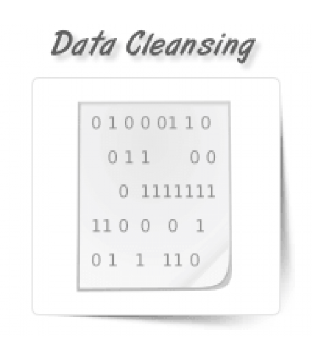 Data Cleansing/Enrichment