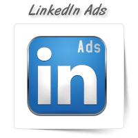 LinkedIn Ad Management