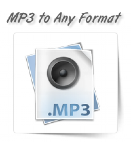 MP3/MP4/WAV to Any Format