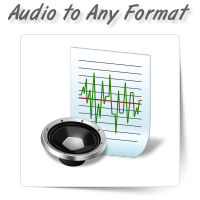 Audio to Any File Format