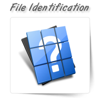 Unknown File Type Identification