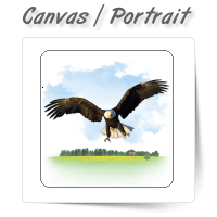 Canvas Portrait Enhancement