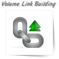 High Volume Link Building