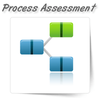 Process & Governance Assessment