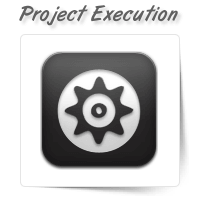 Project Management and Execution