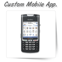 Custom Mobile Software Development
