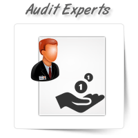 Accounts Payable/Receivable Audit Experts