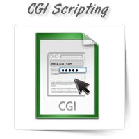 CGI & Perl Scripting