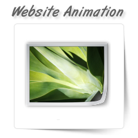Flash Website Animation