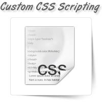 Custom CSS Scripting